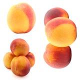 De nectarine van de inzameling Stock Fotografie