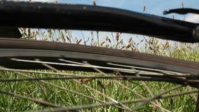 De neerstorting van de bergfiets - spinnend achterwiel stock videobeelden