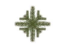 De nette tak van de sneeuwvlok Stock Foto