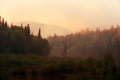 De nevel van de ochtend over de rivier Royalty-vrije Stock Fotografie