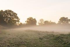 De nevel van de ochtend over een weide stock foto