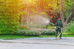 De nevel van de tuinmanarbeider het water geven boom en installatie royalty-vrije stock afbeelding