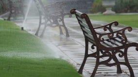 De nevelwater van de watersproeier in het park stock footage