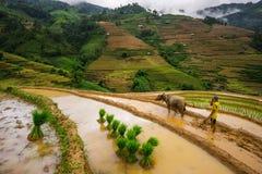 De niet geïdentificeerde farmers do agriculture baan op hun gebieden op 13 Juni, 2015 in Mu Cang Chai, Yen Bai, Vietnam Royalty-vrije Stock Foto's