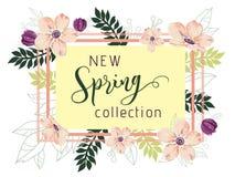 De nieuwe achtergrond van de de lenteinzameling Royalty-vrije Stock Afbeeldingen