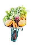 De nieuwe oogst Stock Foto's