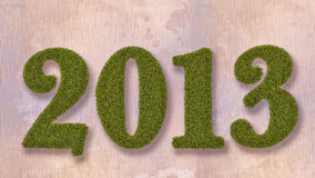 De nieuwe tekst van het jaar 2013 gras Royalty-vrije Stock Fotografie