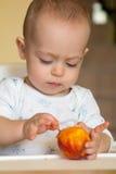 De nieuwsgierige babyjongen onderzoekt een perzik Stock Foto