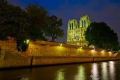 de night贵妇人notre巴黎 免版税图库摄影