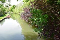 De nok Cambridge van de rivier royalty-vrije stock foto's