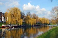 De Nok van de rivier in Cambridge, het Verenigd Koninkrijk stock afbeeldingen