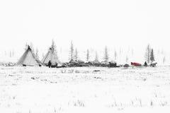 De nomadische stam treft aan seizoenmigratie voorbereidingen in de polaire toendra bij een ijzige dag stock fotografie