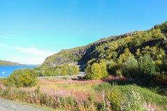 In de noordelijke bergen Stock Foto