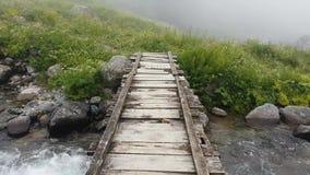 De noordelijke rivieren van Turkije Rize met het leven van het land van de watervallenaard, de Zwarte Zee Karadeniz, Turkije stock video