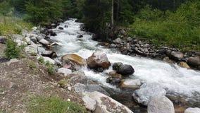 De noordelijke rivieren van Turkije Rize met het leven van het land van de watervallenaard, de Zwarte Zee Karadeniz, Turkije stock footage