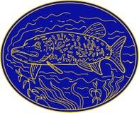De noordelijke Snoeken vissen Ovale Monolijn stock illustratie