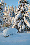 De Noorse Winter Stock Foto