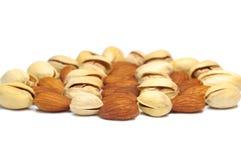 De noot van de amandel en van de pistache. Royalty-vrije Stock Foto's