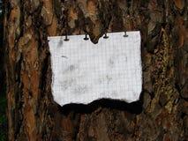 De nota in bijlage aan een boom Royalty-vrije Stock Foto's