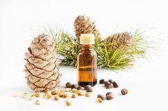 De noten en de olie van de ceder Stock Foto's