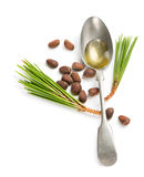 De noten en de olie van de ceder Royalty-vrije Stock Foto's