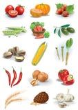 De noten en de species van groenten Stock Afbeelding