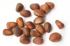 De noten van de ceder Royalty-vrije Stock Afbeeldingen