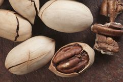 De noten van de pecannoot Royalty-vrije Stock Foto