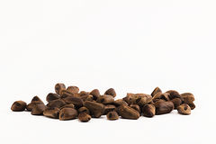 De noten van de pijnboom Stock Foto's