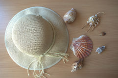 De nouveau à la plage Photo libre de droits