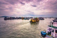 15 de noviembre de 2014: Grupo de tourboats en Bombay, la India Fotografía de archivo