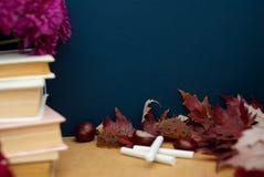 De nuevo a concepto de la escuela Tizas de Autumn Flowers y del libro de las hojas Copie el espacio Otoño de los alumnos Fotografía de archivo