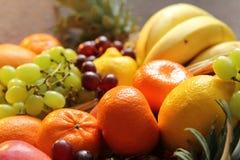 Nya frukter royaltyfri bild