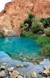 De oase Chebika van de berg Royalty-vrije Stock Foto