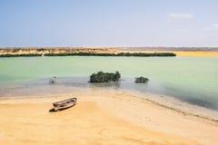 De oase in het midden van de woestijn in Punta Gallinas, Colombia royalty-vrije stock afbeelding