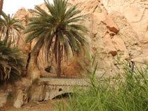 De oase van de Chebikaberg op de grens van de Sahara, duidelijke blauwe hemel, Tunesië, Afrika stock afbeelding
