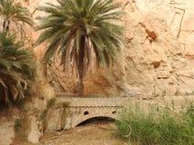 De oase van de Chebikaberg op de grens van de Sahara, duidelijke blauwe hemel, Tunesië, Afrika stock afbeeldingen