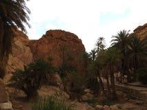 De oase van de Chebikaberg op de grens van de Sahara, duidelijke blauwe hemel, Tunesië, Afrika royalty-vrije stock afbeelding