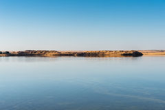 De Oase van Dakhla, Egypte stock fotografie