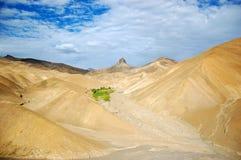 De oase van de bergwoestijn stock afbeeldingen