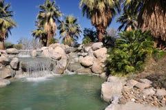 De oase van de Woestijn van de palm Royalty-vrije Stock Fotografie