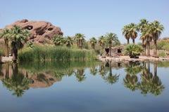 De oase van de woestijnberg stock foto