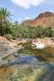 De oase Wadi Daerhu op het Eiland Socotra royalty-vrije stock afbeeldingen