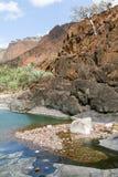 De oase Wadi Daerhu op het Eiland Socotra stock foto