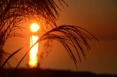 De ochtend van Burlington met zonsopgangscène Stock Foto's