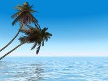 De ochtend van de palm royalty-vrije illustratie