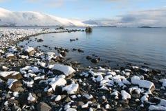 De Ochtend van de winter bij het Meer Stock Afbeeldingen