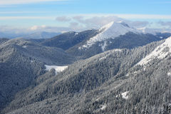 De ochtend van de winter in de bergen Stock Foto