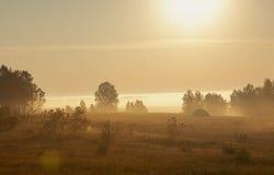 De ochtend van de zomer Royalty-vrije Stock Fotografie