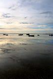 De ochtend van het landschap Stock Afbeeldingen